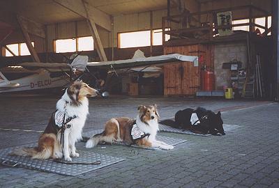 """""""Flughafentraining, auch das will gelernt sein!"""""""
