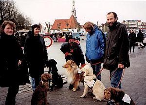 Markt - und Stadttraining für werdende Therapie- und Behindertenbegleithunde