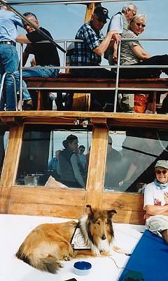 Auf dem Deck, immer im Visier des Kapitäns