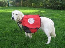 Yasmin beim Packtaschen- Training