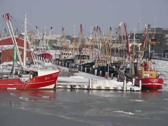 Büsumer Hafen im Winter
