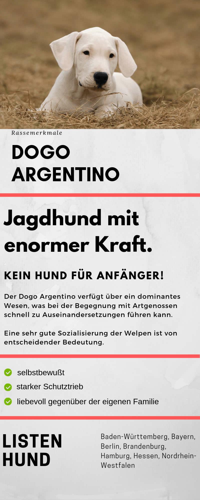 Dogo Argentino Welpen De